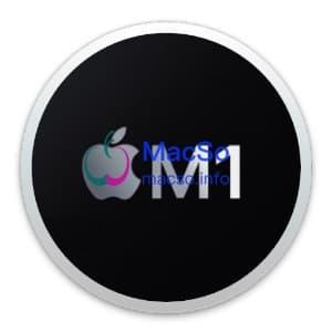 Apple Silicon M1 应用闪退的解决办法